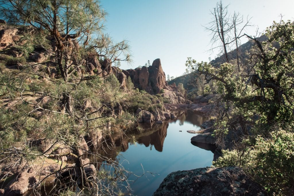 Pinnacles National Park Reservoir by Alicia Arcidiacono