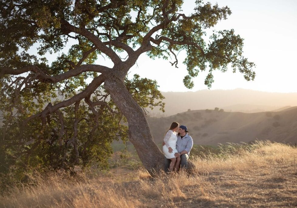 Engagement Paicines Ranch Oak Forest by photographer Alicia Arcidiacono